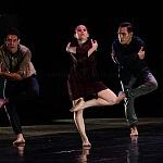 Babel presentanción coreografica de la compañía Bruja Danza (15)