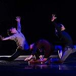 Babel  presentanción coreografica de la compañía Bruja Danza (3).