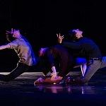 Babel  presentanción coreografica de la compañía Bruja Danza (4)