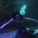 durante el segundo aniversario del acuario inbursa se presento una sirena