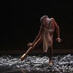 México City Ballet  presenta el  Pulso en el Teatro de la Ciudad Esperanza Iris 7