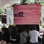 SURF FILM FESTIVAL CDMX 2016