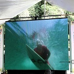 SURF FILM FESTIVAL CDMX 2016 (2)