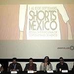 Shorts México (5)
