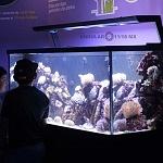 laboratorio submarino Blau Life ciudad de México