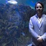 fotógrafo de vida marina  y tiburones Gerardo Villar