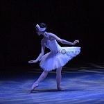 ensayo del lago de los cisnes de la compañia nacional de danza en Bellas Artes (1)