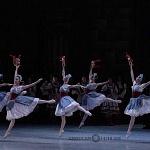 ensayo del lago de los cisnes de la compañia nacional de danza en Bellas Artes (13)