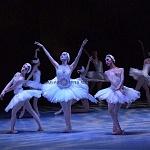 ensayo del lago de los cisnes de la compañia nacional de danza en Bellas Artes (14)