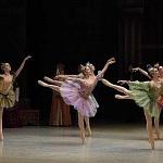 ensayo del lago de los cisnes de la compañia nacional de danza en Bellas Artes (15)