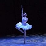 ensayo del lago de los cisnes de la compañia nacional de danza en Bellas Artes