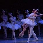 ensayo del lago de los cisnes de la compañia nacional de danza en Bellas Artes (16)