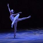 ensayo del lago de los cisnes de la compañia nacional de danza en Bellas Artes (17)