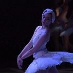 ensayo del lago de los cisnes de la compañia nacional de danza en Bellas Artes (18)