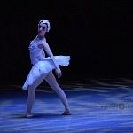 ensayo del lago de los cisnes de la compañia nacional de danza en Bellas Artes (3)