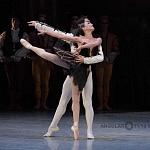 ensayo del lago de los cisnes de la compañia nacional de danza en Bellas Artes (8)