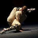 Directo desde China la leyenda Shaolin Warriors se prenta en el teatro uno (11)