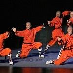 Directo desde China la leyenda Shaolin Warriors se prenta en el teatro uno (13)