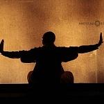Directo desde China la leyenda Shaolin Warriors se prenta en el teatro uno (6)