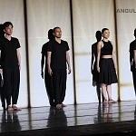 Enra compañía japonesa que unifica los movimientos corporales con animación digital se presento en el Teatro Esperanza Iris de la Ciudad de México (1)