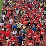 meta de la XXXV edición del Maratón de la ciudad de México (4)
