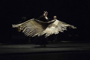 2° Encuentro en México de Arte Flamenco en América Teatro Esperanza Iris (12)