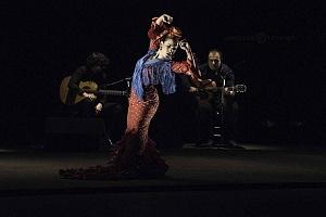 2° Encuentro en México de Arte Flamenco en América Teatro Esperanza Iris (2)