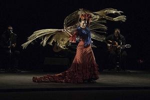 2° Encuentro en México de Arte Flamenco en América Teatro Esperanza Iris (3)