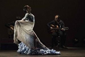 2° Encuentro en México de Arte Flamenco en América Teatro Esperanza Iris (4)
