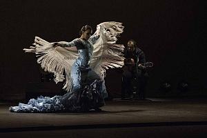 2° Encuentro en México de Arte Flamenco en América Teatro Esperanza Iris (6)