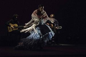 2° Encuentro en México de Arte Flamenco en América Teatro Esperanza Iris (7)
