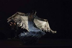 2° Encuentro en México de Arte Flamenco en América Teatro Esperanza Iris (9)