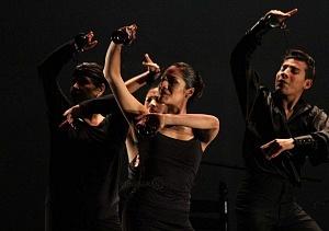 Finaliza el 2° Encuentro en México de Arte Flamenco en América teatro Esperanza Iris 1