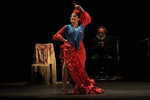 Finaliza el 2° Encuentro en México de Arte Flamenco en América teatro Esperanza Iris 5