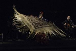 Viva Flamenco (7)