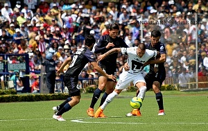 Nicolás Castillo delantero de Pumas en la jornada 9 del clausura 2018 (p1)
