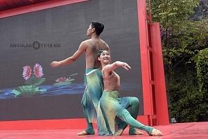 en el jardín principal de la sede diplomática China se ofrecieron shows de canto y danza Artística con motivo del año Chino del perro 4