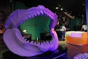 INBURSA estrena acuario interactivo
