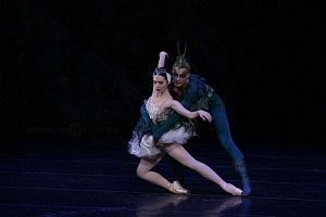 El Lago de los Cisnes Regresa al Palacio de Bellas Artes 11
