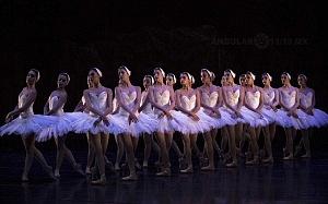 El Lago de los Cisnes Regresa al Palacio de Bellas Artes 8