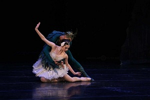 Espectacular inicio de temporada de El lago de los cisnes en el Palacio de Bellas Artes 11