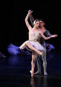 Espectacular inicio de temporada de El lago de los cisnes en el Palacio de Bellas Artes 6