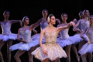 Espectacular inicio de temporada de El lago de los cisnes en el Palacio de Bellas Artes 8