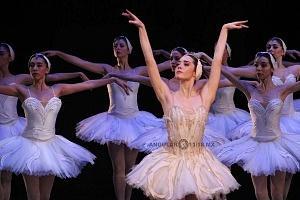 Espectacular inicio de temporada de El lago de los cisnes en el Palacio de Bellas Artes 9