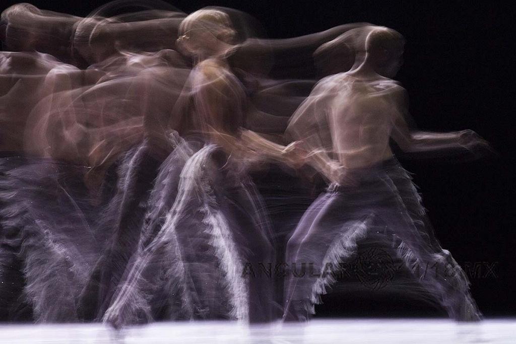 Nederlands Dans Theater 2 se presentó en el Teatro de la Ciudad Esperanza Iris