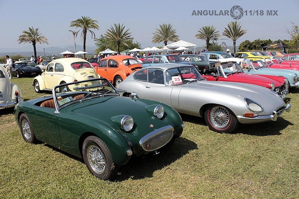 Festival VintageTercera Edición, Jardines de México, exhibición de autos clásicos y deportivos 2018