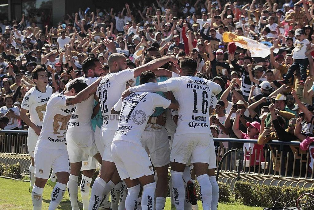 festejo del gol de Pumas frente a tigres en los cuartos de final del apertura 2018